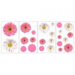 Decorative sticker - Daisies